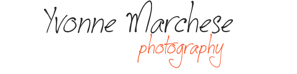 YMP Logo 6 transparent