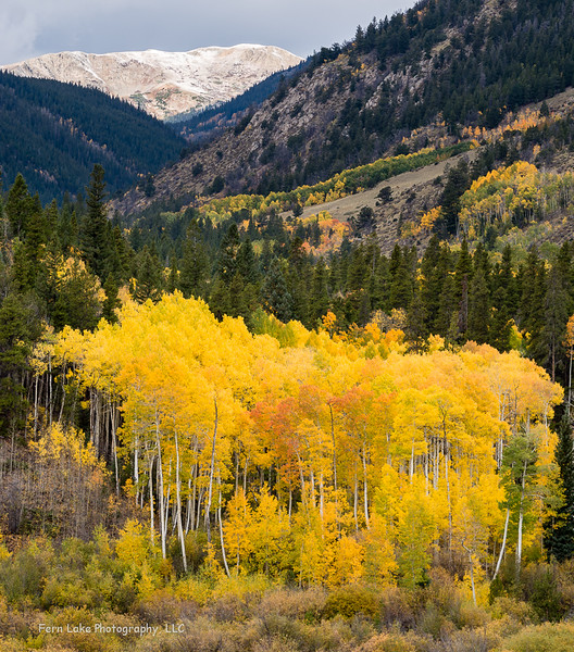 """Cottonwood Pass"" - Image #A-D8993"
