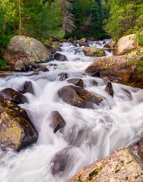 """Wild Basin"" - Image #C_0253"