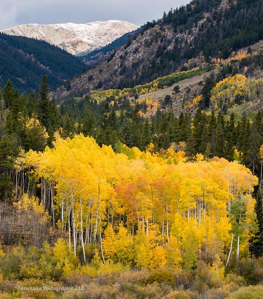 """Cottonwood Pass"" - Image #A-D8993"