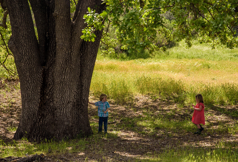 Two kids playing at a pinic