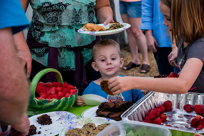 A boy contemplates the offer of a cookie at a memorial day picnic.