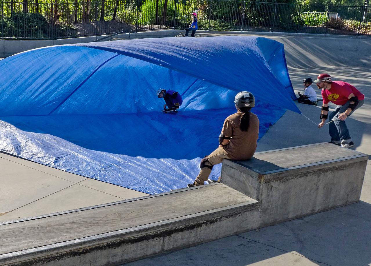 Ron Hall   Surfing skateboard park