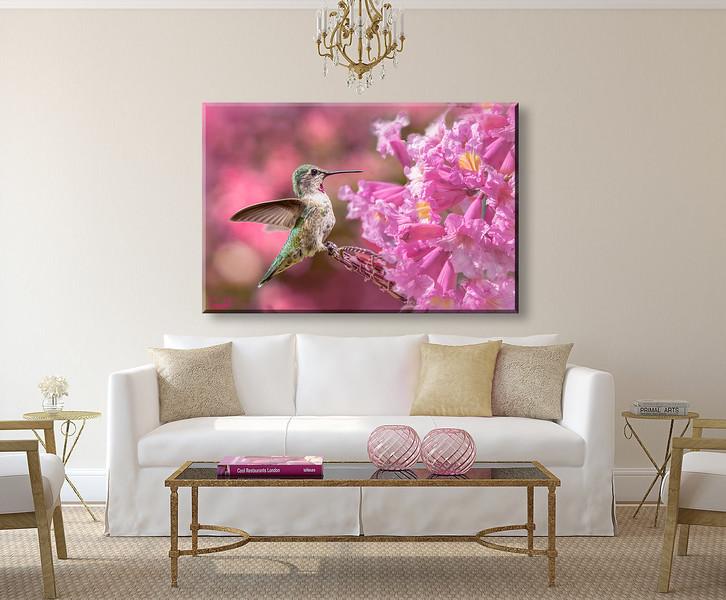 HB-Pink-sofa