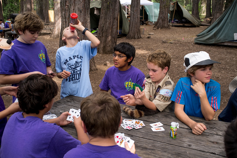 boy scouts playing cards, Northern California.