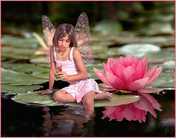 annalise water lily
