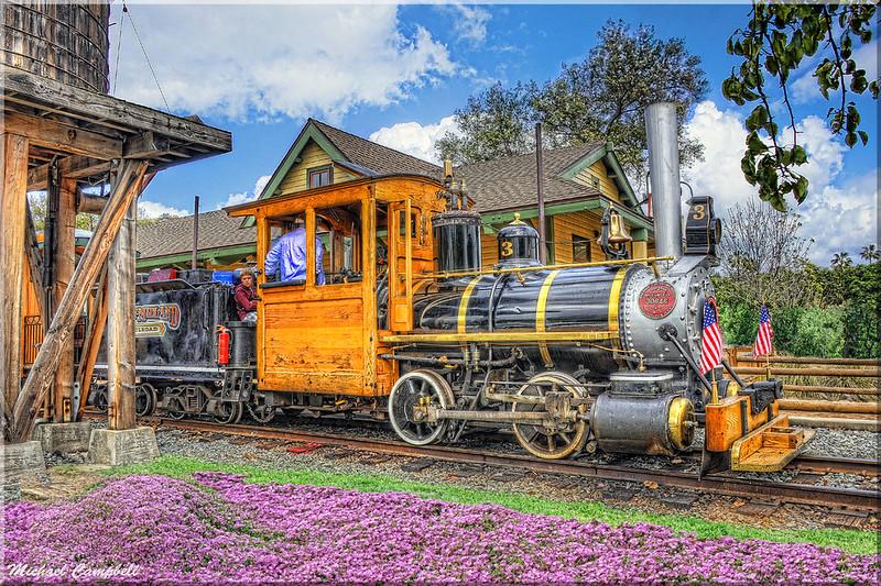 POWAY-TRAIN-flowers--copy