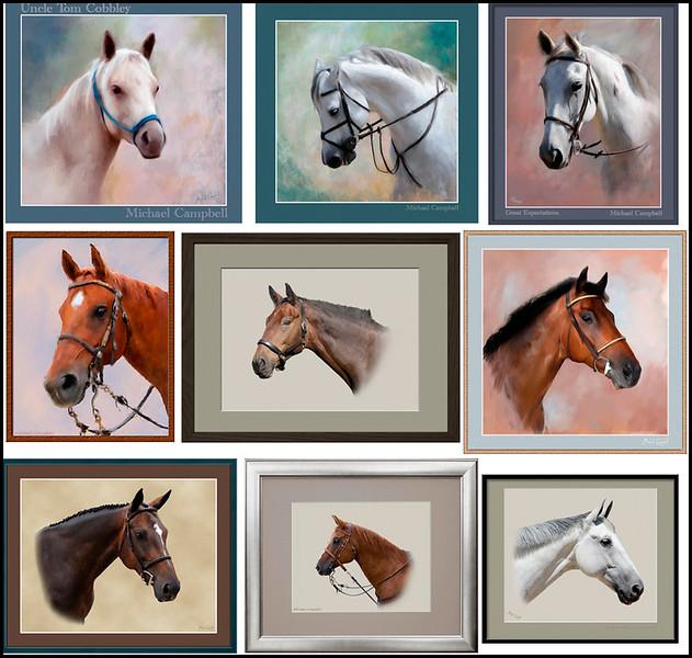 horse pics copy