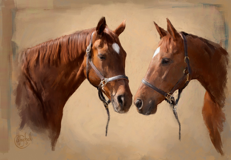 Two Horses 8x10