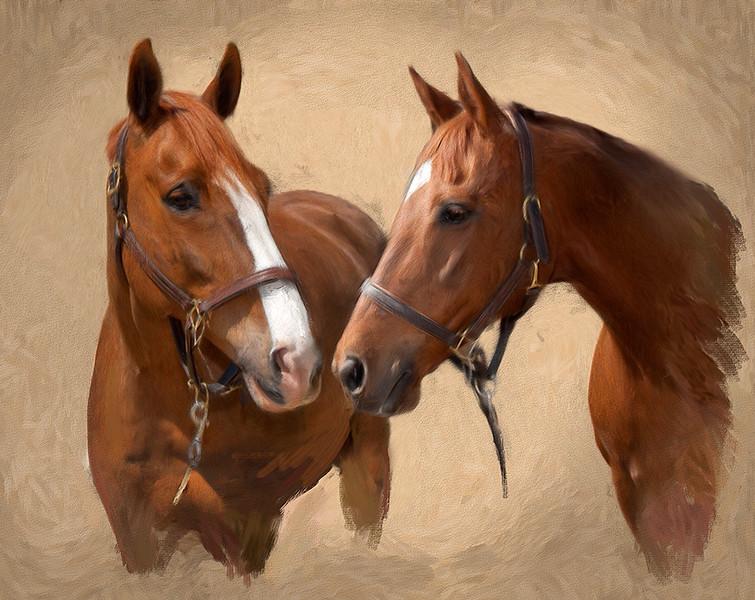 Roxana-2-horses