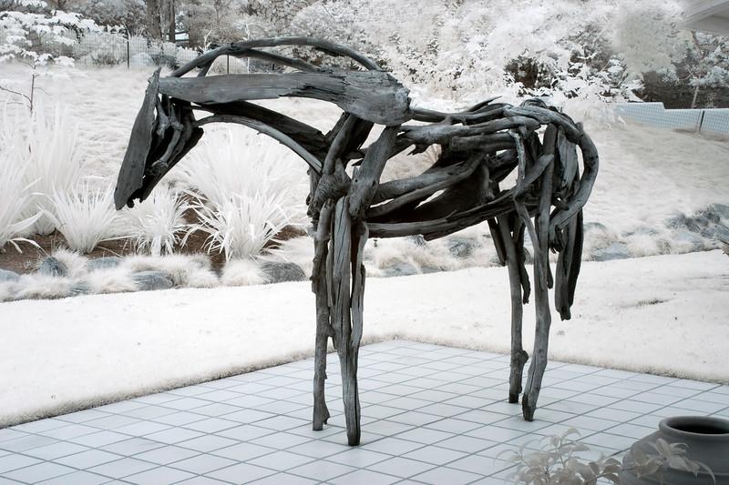 horseIRF1625