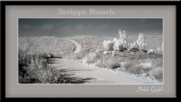 scripps-trail396