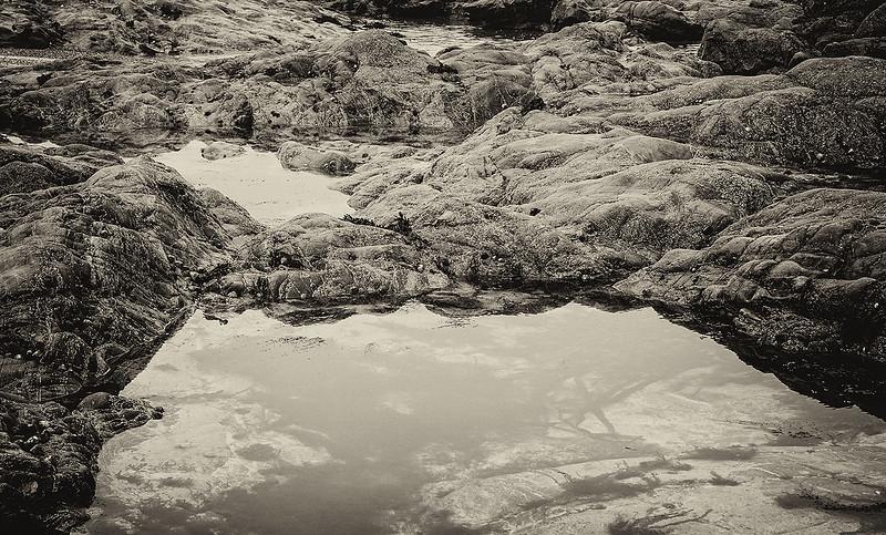 tide-pools-flat-C5899
