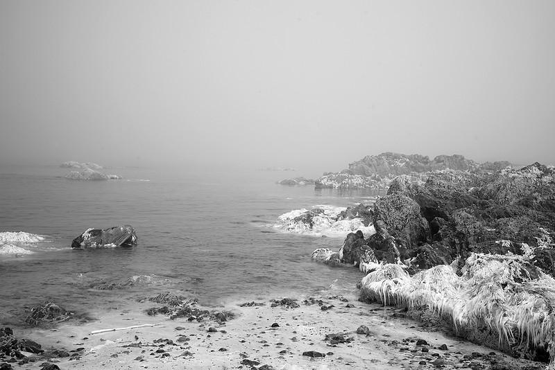 IR-sea-mist-3967