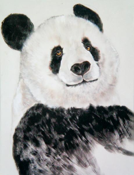 Panda high res