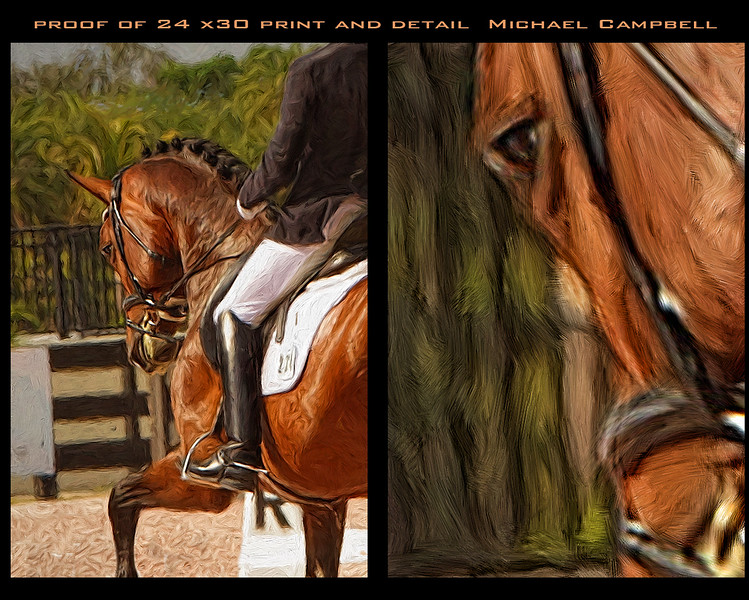 Tracy-horse-large-20x-30-y-copy
