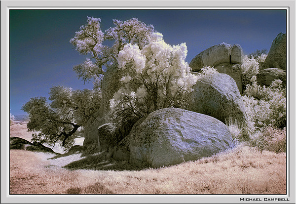 Infra-Red-Rock-color