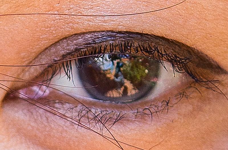 Crop-eye