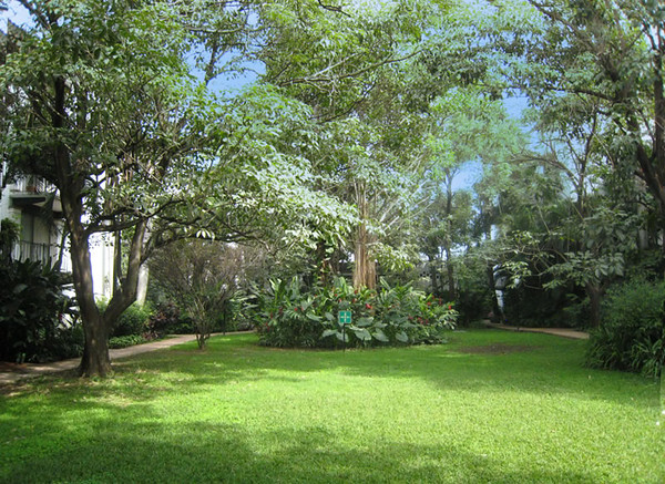 garden_area