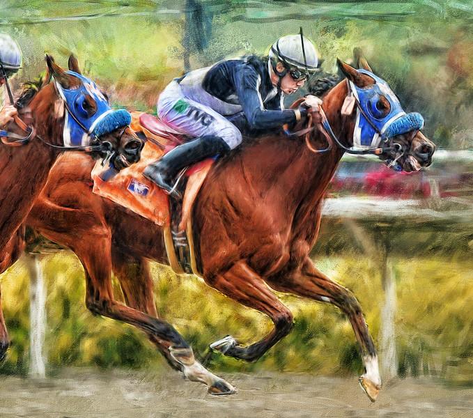 Horse-race-finished