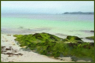 iona-beach-1