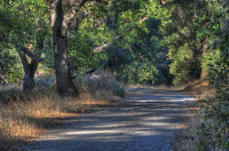 judy-ranch-path