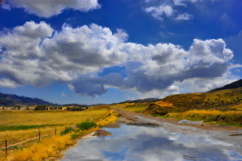 road-with-puddle-