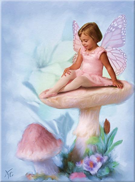 Sidney-mushroom800-