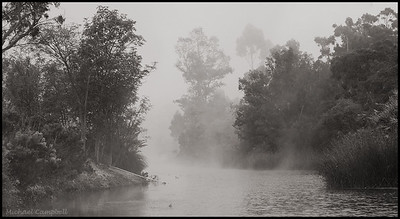 Scripps-Lake-fog