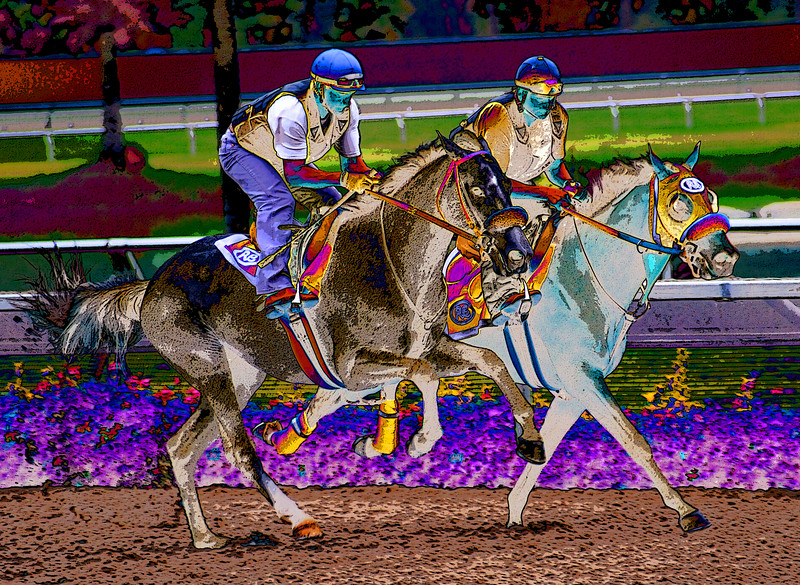 horses abstract6356