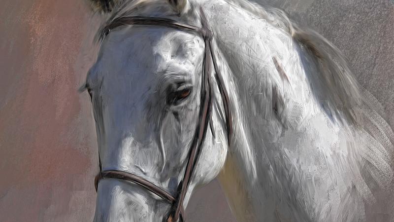 white horse cu