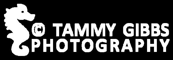 TGibbs logo white