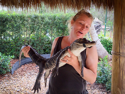 Cindy Held A Gator 2