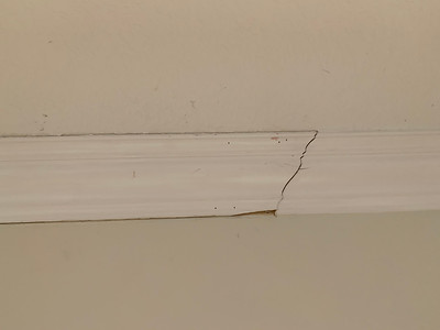 Crown molding before patching