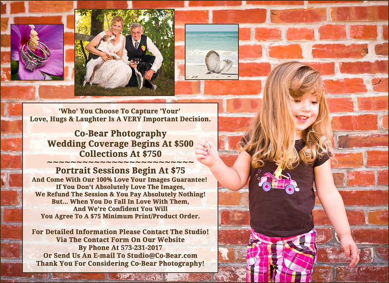 Co-Bear Photography Price & Investment