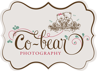 Co-Bear, Photography, Logo, love hugs and laughter, wedding, portrait, brand, branding