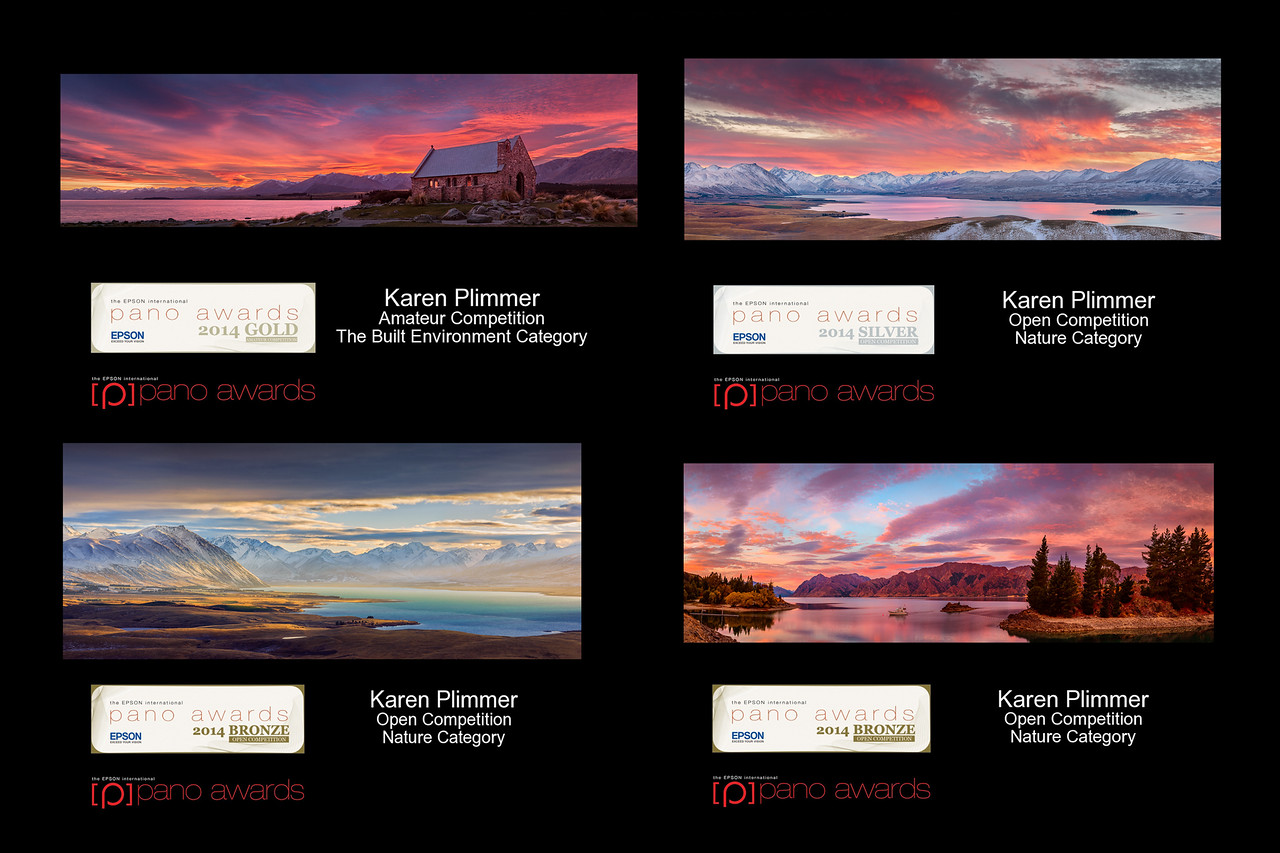 2014 Epson International Pano Awards