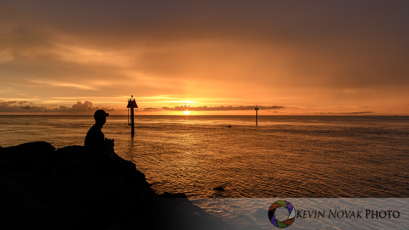 A man, his dog, and a dolphin watching the sunset at the Venice Jetty.