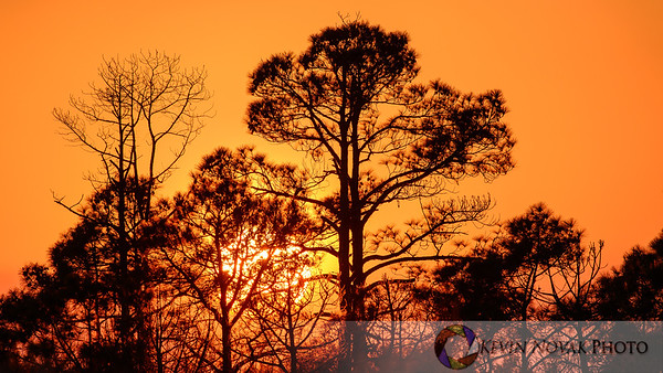 Sunset, St. Andrews State Park, Panama City Beach, FL.  ©2015 Keivn Novak.