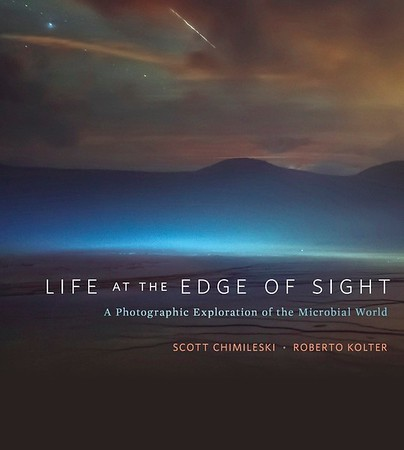 Life at the Edge of Sight Scott Chimileski