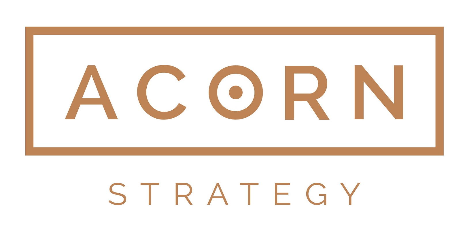 Acorn Strategy logo (photo credit: MEPRA)