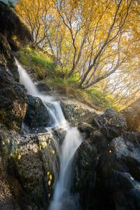 The Falls of Autumn