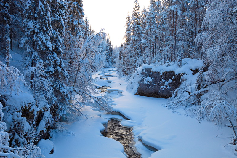 Norra Anundsjöån i Selsmo -  River flowing through snowy forest