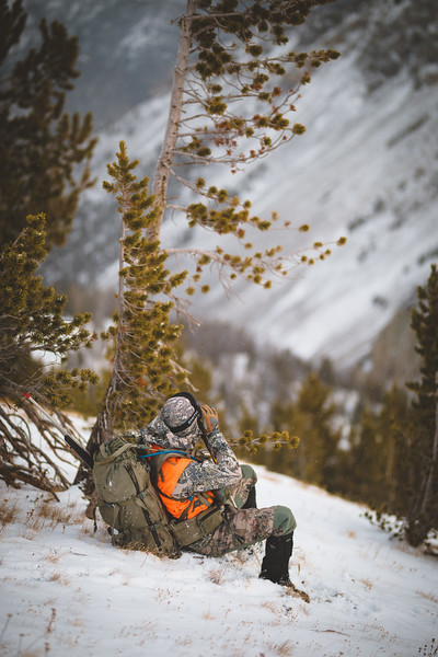 Casey Barton ( _caseybarton_) glassing for an unlimited ram in Montana. November 2018