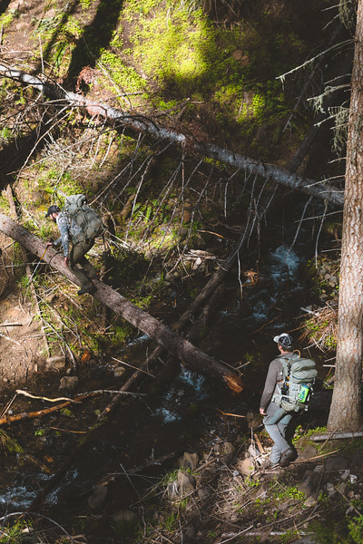 Casey Barton (_caseybarton_) and Cooper Brooks (coop41_brooks) head into Idaho's bear country on a 3 day black bear hunt. April 2018