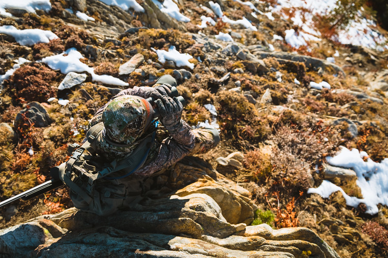 Casey Barton (_caseybarton_) glassing for a bull elk in Idaho's backcountry. October 2018