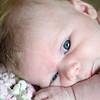 Image ID - 3905 Image ID -