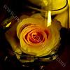 Yellow Rose Center Piece