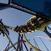 Six Flags Favorites-536