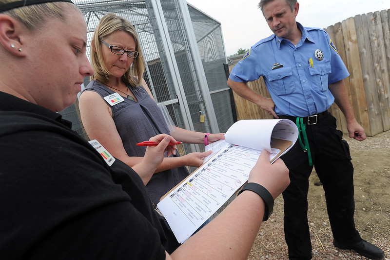 Larimer Humane Society foster and transfer coordinator Sarah Murphy, left, director of operations Jenn Barg, center, and Capt. Bill Porter go through a list of dogs Tuesday, July 26, 2016, while working to transfer some dogs to other shelters after they rescued 63 Chihuahuas from a home breeder situation in southern Larimer County. The owner surrendered the dogs to the humane soceity. (Photo by Jenny Sparks/Loveland Reporter-Herald)